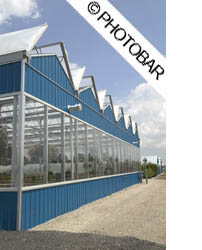 picture of a large commercial greenhouse